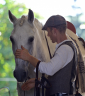 DRESSUR & EQUITATION- Tag Andreas Huber- Donnerstags bei FarmersPlace